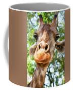 Giraffe Interest Coffee Mug