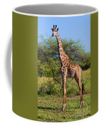 Giraffe On Savanna. Safari In Serengeti Coffee Mug