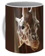 Giraffe Taking A Peek Coffee Mug