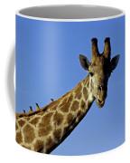 Giraffe With Oxpeckers Coffee Mug