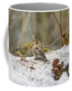 Give Me A Kiss. Redpolls And Greenfinches Coffee Mug