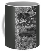 Glacier Lake Coffee Mug