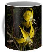 Glacier Lily 2 Coffee Mug