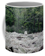 Glacier Rock 2 Coffee Mug