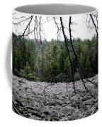 Glacier Rock 1 Coffee Mug