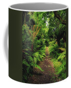 Glanleam, Co Kerry, Ireland Pathway Coffee Mug