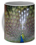 Glassy Peacock  Coffee Mug