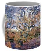 Glen Park Manor Garden Coffee Mug