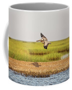 Gliding Over A Shell Island Coffee Mug