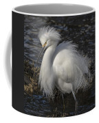 Glorious Egret Coffee Mug