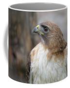 Glory Of It Coffee Mug