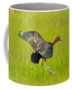 Glossy Ibis Coffee Mug