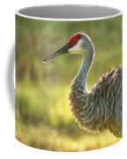 Glowing Marsh Sandhill Coffee Mug