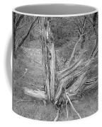 Gnarled Cedar Stump Coffee Mug