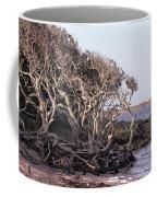 Gnarled Oak Trees Coffee Mug