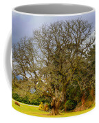 Gnarly Tree Coffee Mug