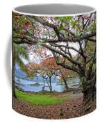Gnarly Trees Of South Hilo Bay - Hawaii Coffee Mug