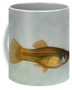 Go Fish Coffee Mug by James W Johnson