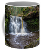 Goit Stock Waterfall Coffee Mug