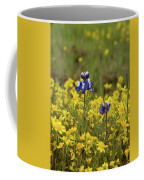 Gold And Blue Coffee Mug