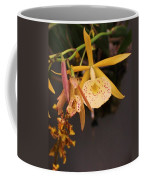 Gold Yellow Orchid  Coffee Mug