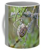Goldcrest Coffee Mug