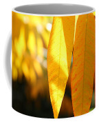 Golden Accent  Coffee Mug