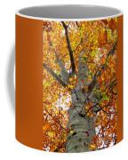 Golden Beech Coffee Mug