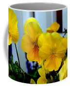 Golden Blooms Beside The Porch Coffee Mug