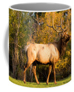 Golden Bull Elk Portrait Coffee Mug