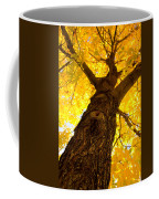 Golden Climb Coffee Mug