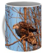 Golden Eagle Liftoff Coffee Mug