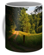Golden Evening Light Coffee Mug