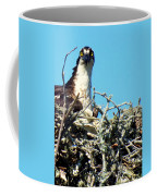 Golden Eyes Coffee Mug