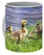Golden Fluff Coffee Mug