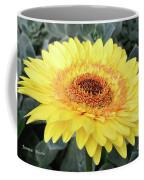 Golden Gerbera Daisy Coffee Mug