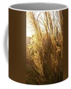 Golden Grass In Sunset Coffee Mug
