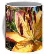 Golden Lily Flower Orange Brown Lilies Art Prints Baslee Troutman Coffee Mug