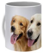 Golden Retrievers Coffee Mug
