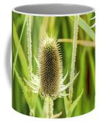 Golden Thistles Coffee Mug