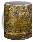 Golden Walnut Orchard II Coffee Mug