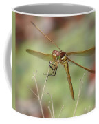 Golden-winged Skimmer Coffee Mug