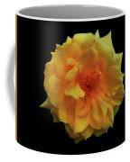 Golden Wonder Coffee Mug