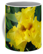Golden Yellow Iris Flower Garden Irises Flora Art Prints Baslee Troutman Coffee Mug