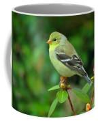 Goldfinch On Green Coffee Mug