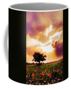 Golds At Sunset After The Rain Coffee Mug