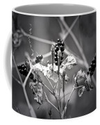 Gone To Seed Berries And Vines Coffee Mug