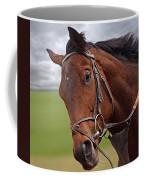 Good Morning - Racehorse On The Gallops Coffee Mug