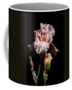 Goodnight Kiss Iris  Coffee Mug