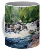 Gooseberry River Coffee Mug